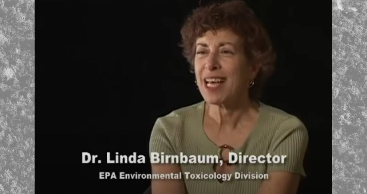 Interview with Dr. Linda Birnbaum about Dioxin